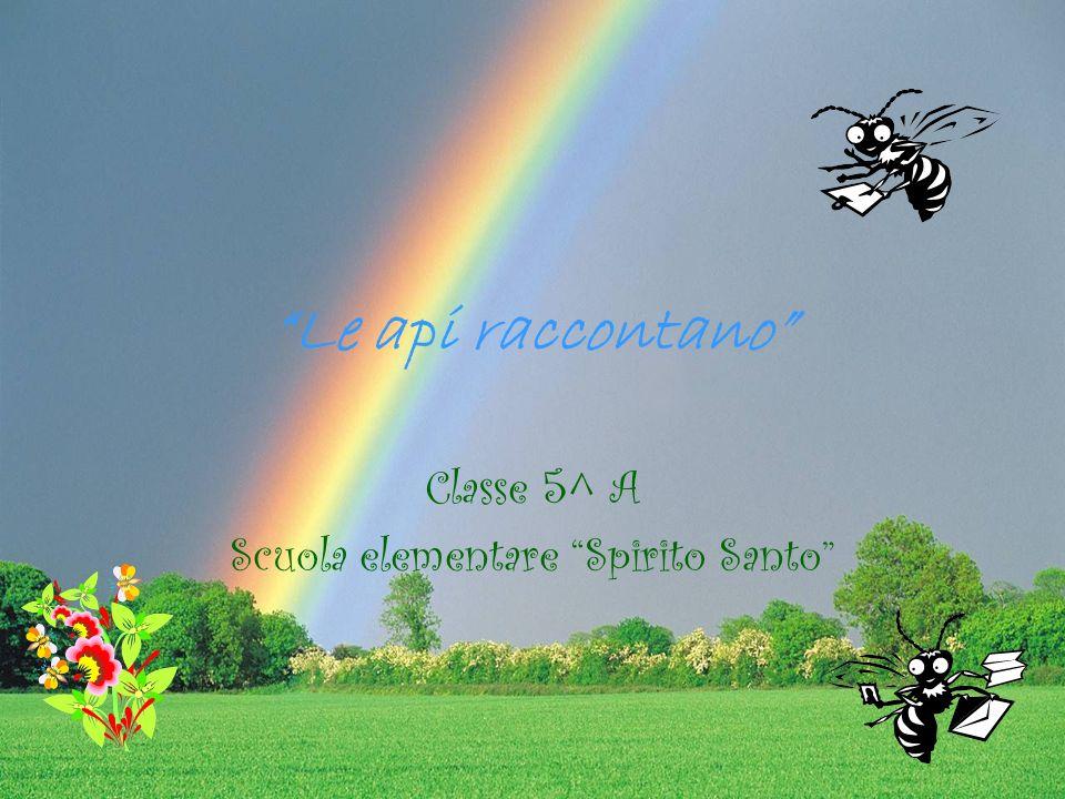 Le api raccontano Classe 5^ A Scuola elementare Spirito Santo