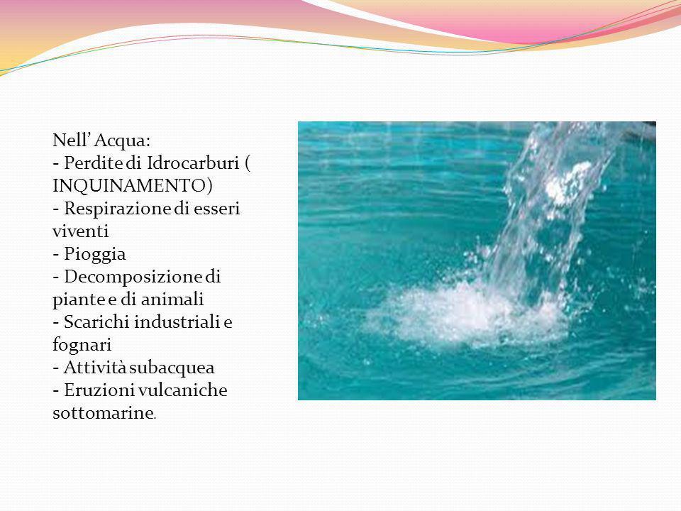 Il Carbonio è in: Aria Acqua Terra.