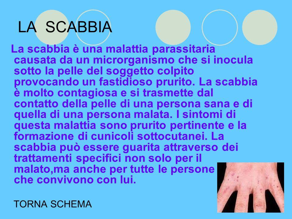 LA SCABBIA La scabbia è una malattia parassitaria causata da un microrganismo che si inocula sotto la pelle del soggetto colpito provocando un fastidioso prurito.