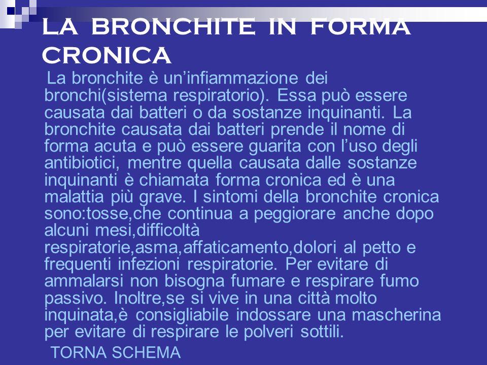 LA BRONCHITE IN FORMA CRONICA La bronchite è uninfiammazione dei bronchi(sistema respiratorio).