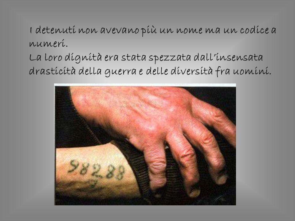 I detenuti non avevano più un nome ma un codice a numeri. La loro dignità era stata spezzata dallinsensata drasticità della guerra e delle diversità f