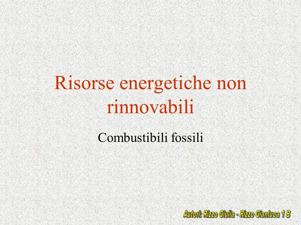 Classificazione delle risorse RISORSE NATURALI RISORSE RINNOVABILIRISORSE NON RINNOVABILI ENERGIA GRAVITAZIONALE ENERGIA SOLARE ENERGIA GEOTERMICA ALTERATE O DISTRUTTE DALLUSO RICICLABILI COMBUSTIBILI FOSSILI CarbonePetrolioGas naturale