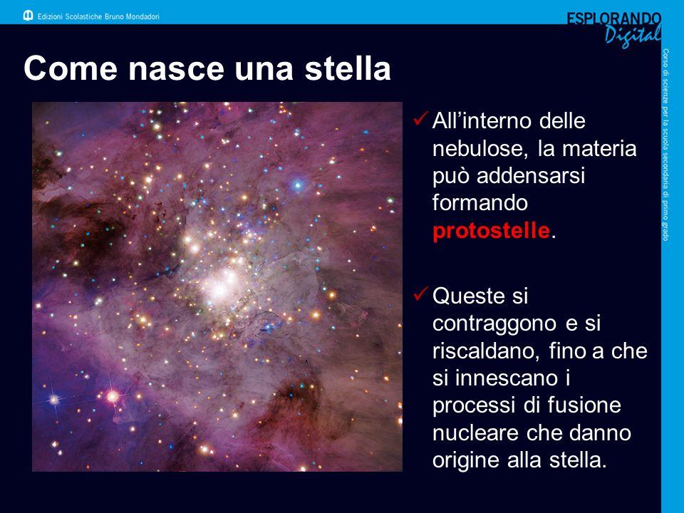 La stella diventa adulta Lenergia prodotta dalle reazioni di fusione bilancia la forza di gravità che farebbe contrarre la stella.