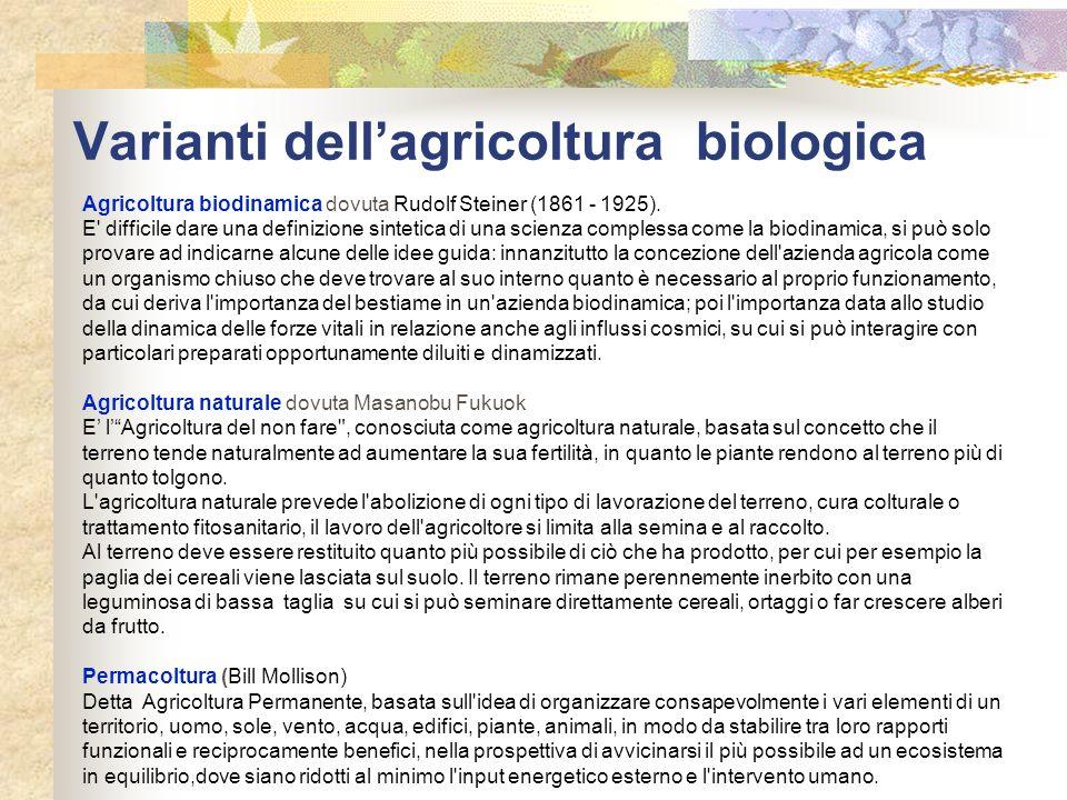 Varianti dellagricoltura biologica Agricoltura biodinamica dovuta Rudolf Steiner (1861 - 1925). E' difficile dare una definizione sintetica di una sci