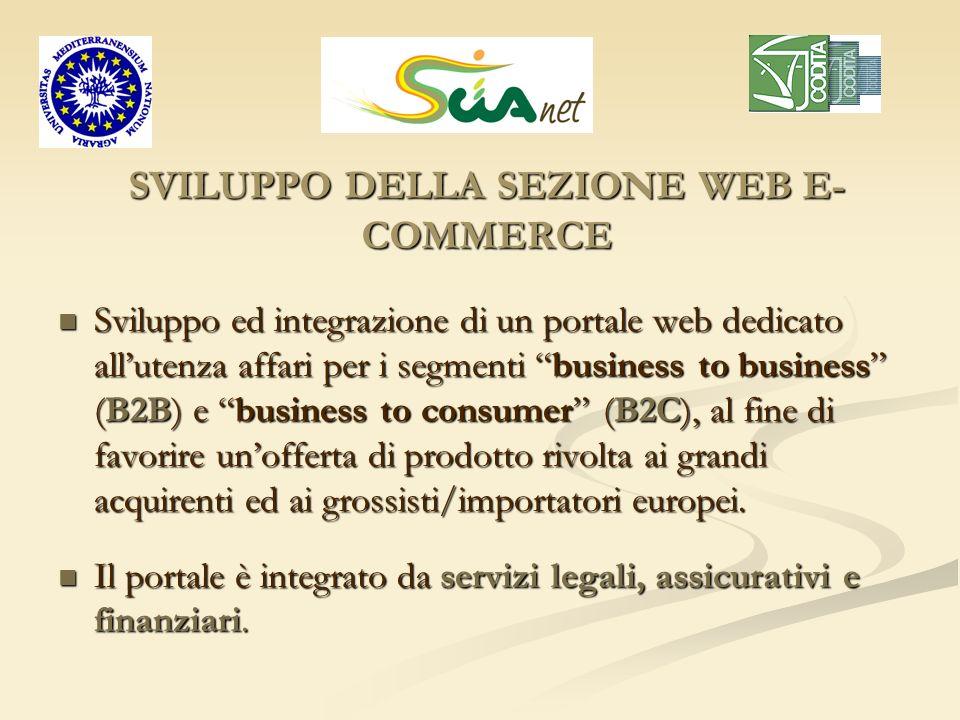 SVILUPPO DELLA SEZIONE WEB E- COMMERCE Sviluppo ed integrazione di un portale web dedicato allutenza affari per i segmenti business to business (B2B)