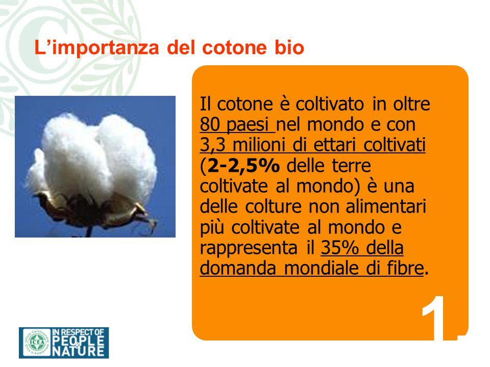 1.1. Limportanza del cotone bio Il cotone è coltivato in oltre 80 paesi nel mondo e con 3,3 milioni di ettari coltivati (2-2,5% delle terre coltivate