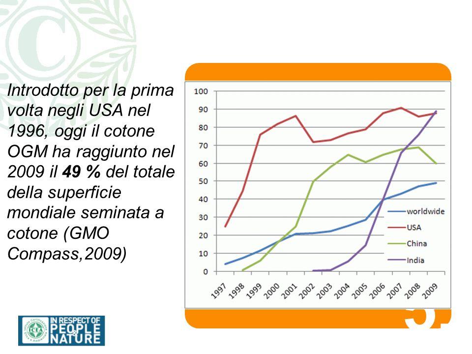 5.5. Introdotto per la prima volta negli USA nel 1996, oggi il cotone OGM ha raggiunto nel 2009 il 49 % del totale della superficie mondiale seminata