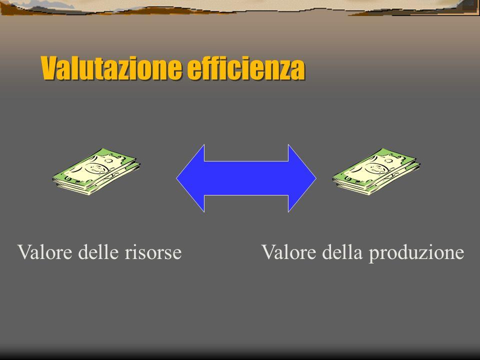 Valutazione efficienza Valore delle risorseValore della produzione