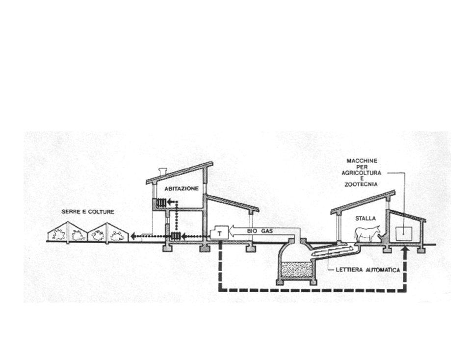 CARBONE PETROLIO METANO diap.7 CO 2 da respirazione CO 2 da risorse non rinnovabili BIOCOMBUSTIBILI
