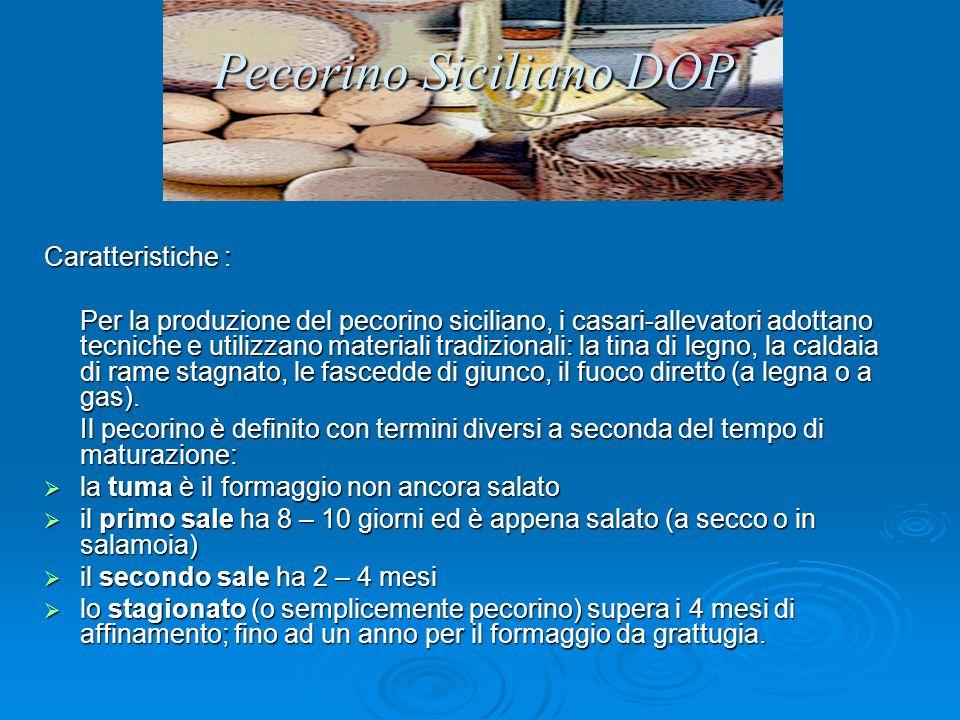 Pecorino Siciliano DOP Caratteristiche : Per la produzione del pecorino siciliano, i casari-allevatori adottano tecniche e utilizzano materiali tradizionali: la tina di legno, la caldaia di rame stagnato, le fascedde di giunco, il fuoco diretto (a legna o a gas).