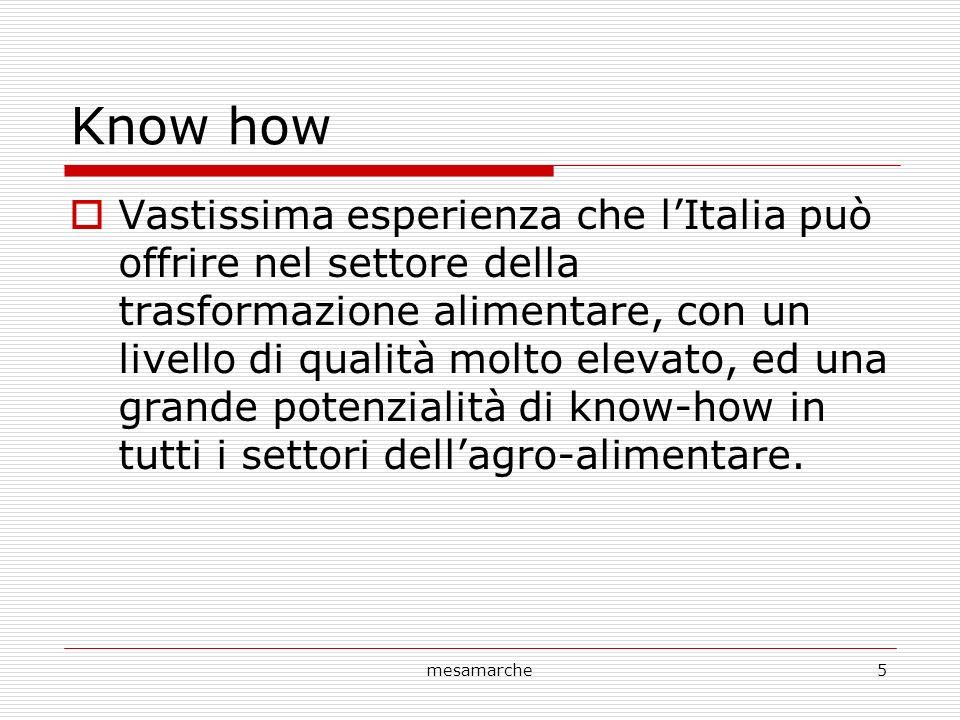 mesamarche5 Know how Vastissima esperienza che lItalia può offrire nel settore della trasformazione alimentare, con un livello di qualità molto elevat