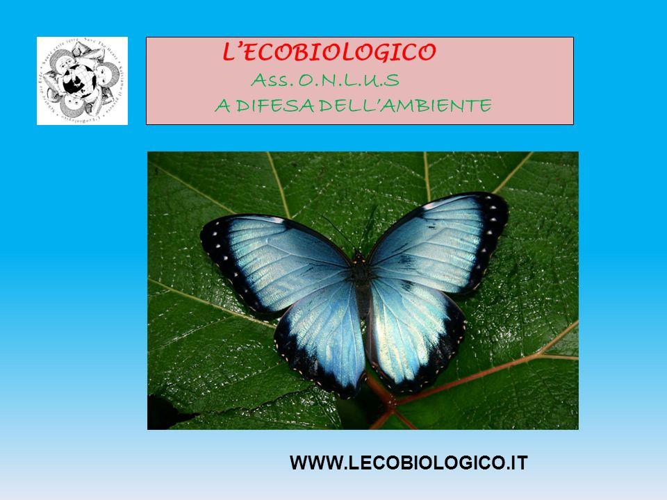 LECOBIOLOGICO Ass. O.N.L.U.S A DIFESA DELLAMBIENTE WWW.LECOBIOLOGICO.IT