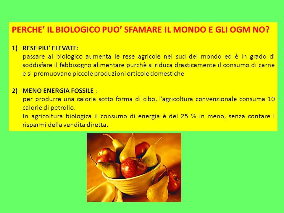PERCHE IL BIOLOGICO PUO SFAMARE IL MONDO E GLI OGM NO.