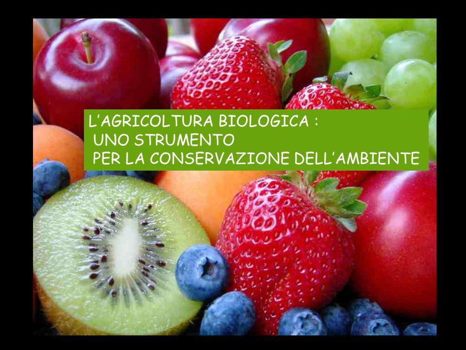LAGRICOLTURA BIOLOGICA : UNO STRUMENTO PER LA CONSERVAZIONE DELLAMBIENTE