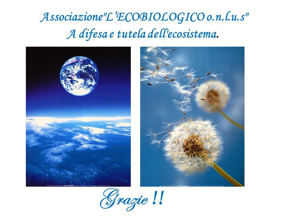 Associazione LECOBIOLOGICO o.n.l.u.s A difesa e tutela dell ecosistema. Grazie !!