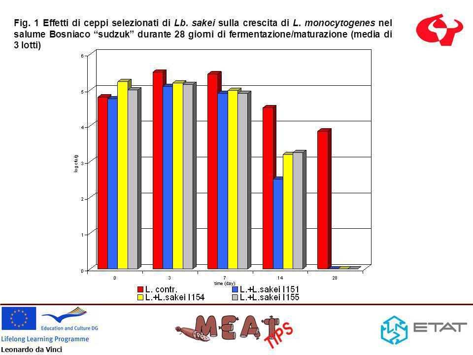 Leonardo da Vinci Resultati Croazia -La crescita di L.