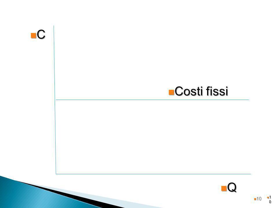1010 Q C Costi fissi Costi fissi