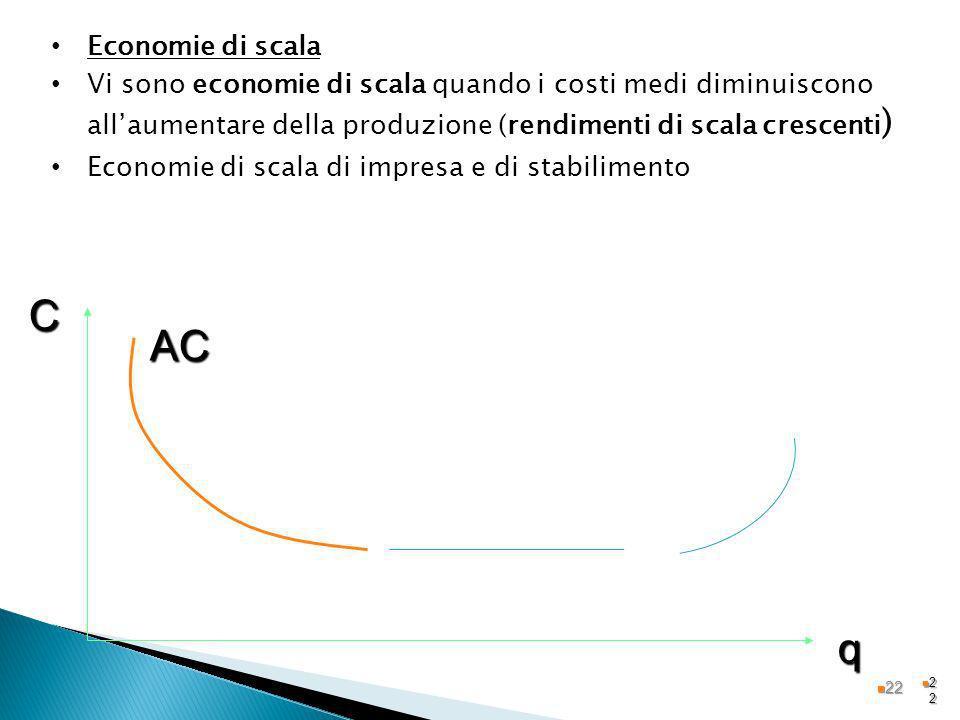 2222 Economie di scala Vi sono economie di scala quando i costi medi diminuiscono allaumentare della produzione (rendimenti di scala crescenti ) Econo