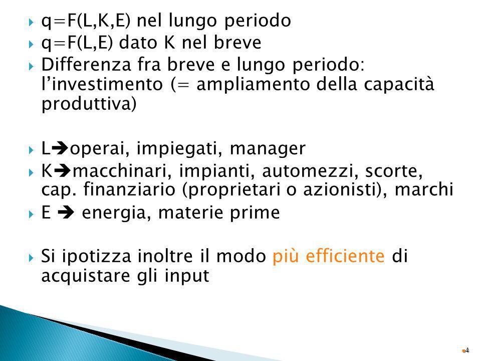 q=F(L,K,E) nel lungo periodo q=F(L,E) dato K nel breve Differenza fra breve e lungo periodo: linvestimento (= ampliamento della capacità produttiva) L