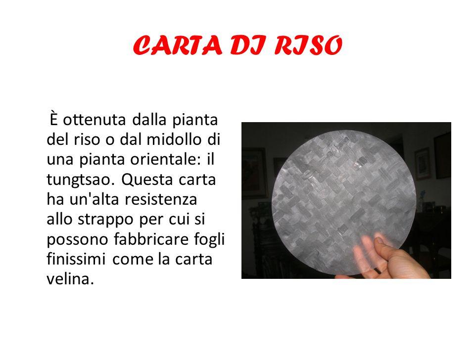 CARTA DI RISO È ottenuta dalla pianta del riso o dal midollo di una pianta orientale: il tungtsao. Questa carta ha un'alta resistenza allo strappo per
