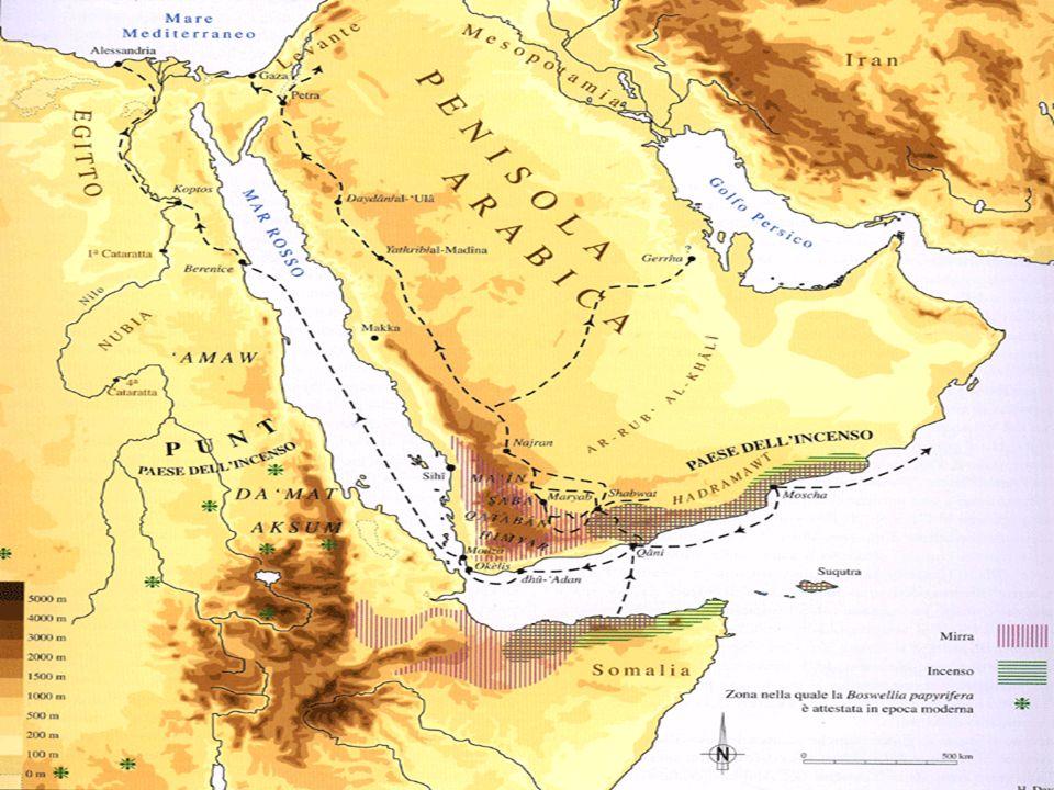 Da tempi antichissimi gli Arabi vivevano nella ma poco popolata e in parte desertica a causa della scarsità delle piogge. una terra arida e immensa pe