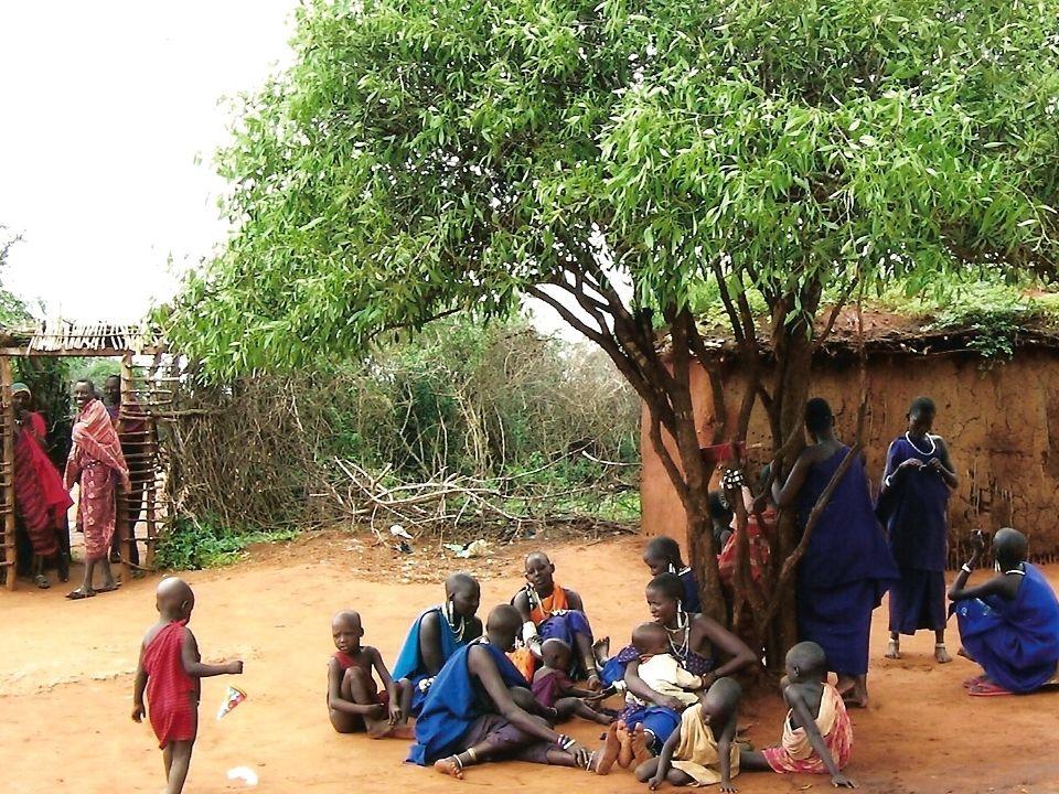 Flora e Fauna presente in kenya Le differenti condizioni climatiche e di altitudine determinano nel paese la presenza di diversi tipi di vegetazione.