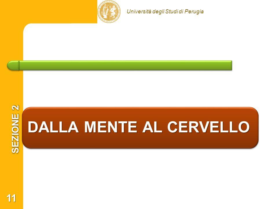 Università degli Studi di Perugia DALLA MENTE AL CERVELLO SEZIONE 2 11