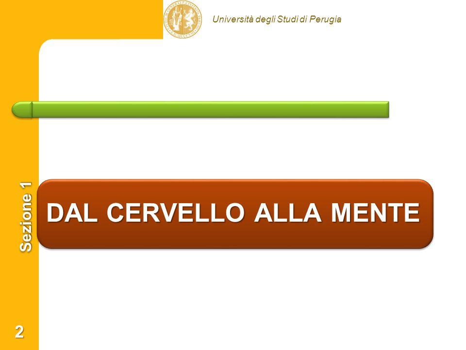 Università degli Studi di Perugia 1° principio di Kandel (1998) Kandel (1998) A new intellectual framework for psychiatry.