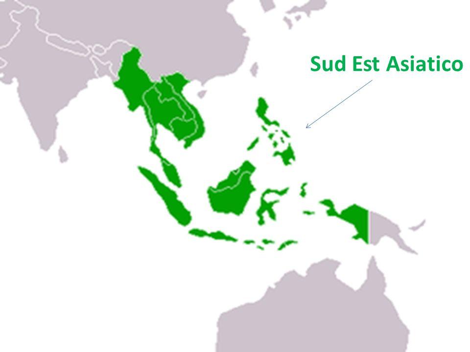 Consideriamo nella nostra analisi i seguenti paesi: Indonesia, Malesia, Thailandia e Vietnam.