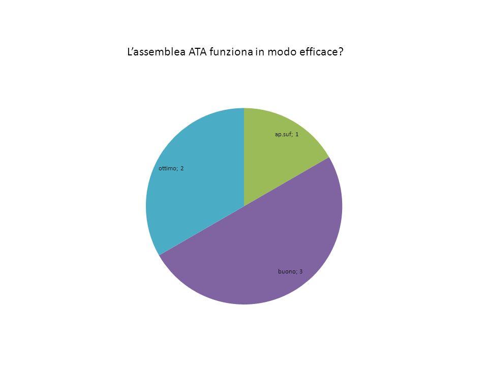 Lassemblea ATA funziona in modo efficace