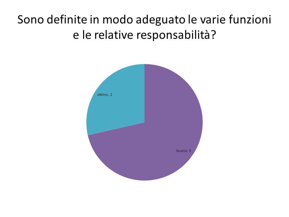 Sono definite in modo adeguato le varie funzioni e le relative responsabilità