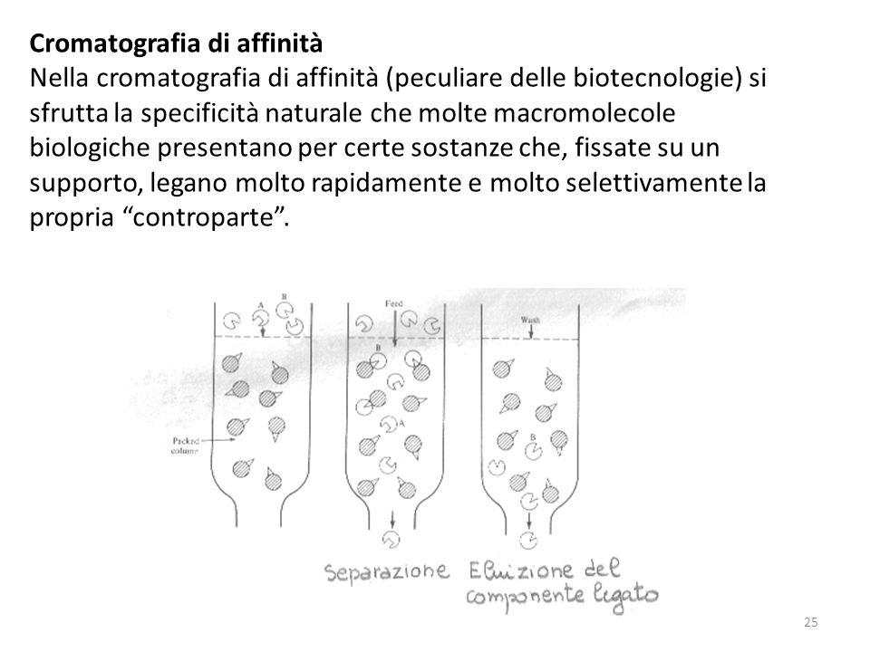 Cromatografia di affinità Nella cromatografia di affinità (peculiare delle biotecnologie) si sfrutta la specificità naturale che molte macromolecole b