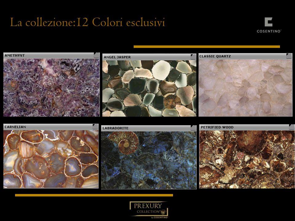 La collezione:12 Colori esclusivi