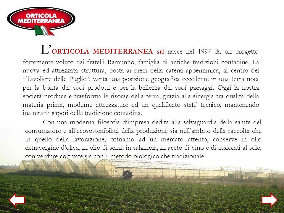 L ORTICOLA MEDITERRANEA srl nasce nel 1997 da un progetto fortemente voluto dai fratelli Ramunno, famiglia di antiche tradizioni contadine. La nuova e