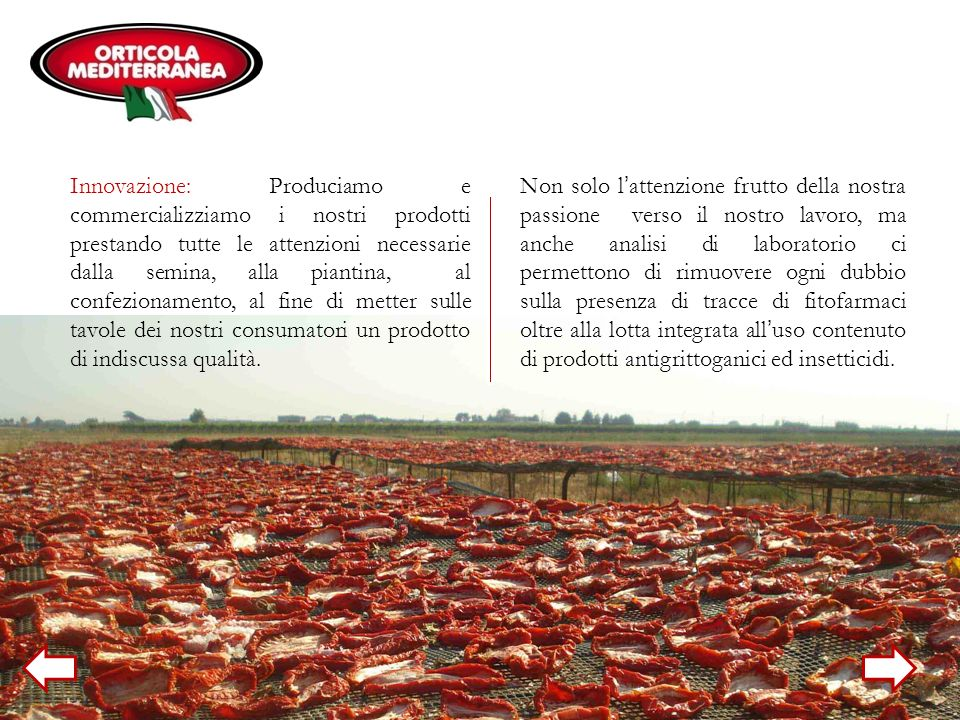 Innovazione: Produciamo e commercializziamo i nostri prodotti prestando tutte le attenzioni necessarie dalla semina, alla piantina, al confezionamento