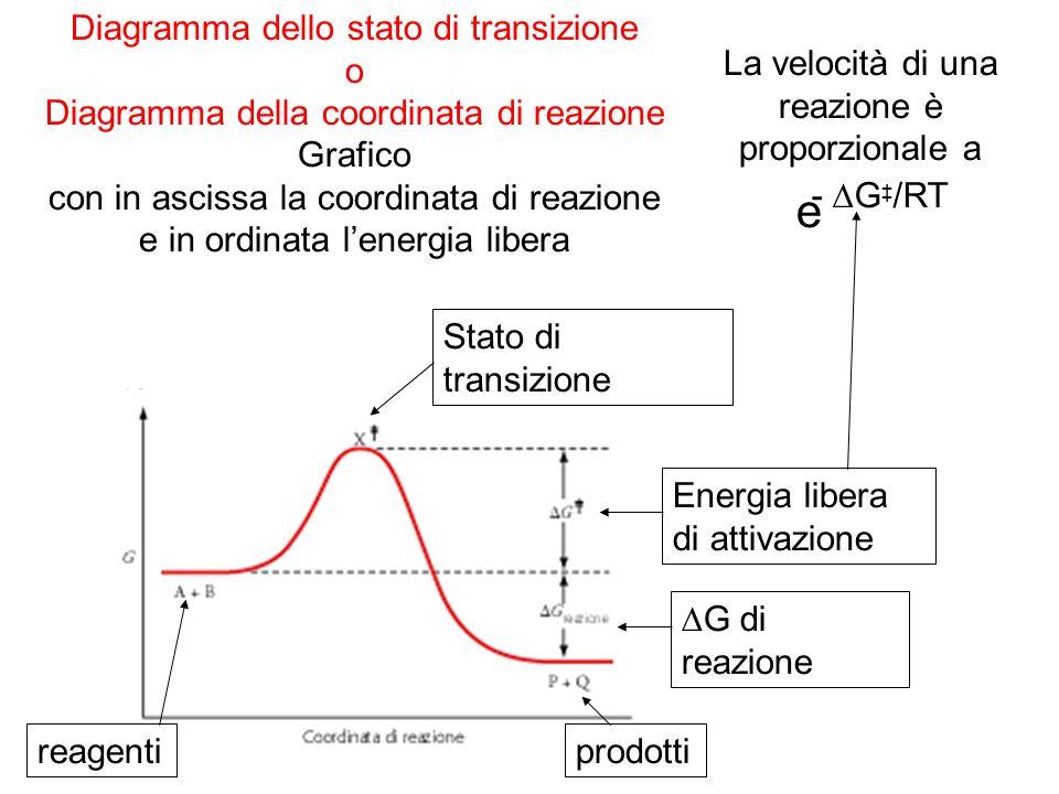 Diagramma dello stato di transizione o Diagramma della coordinata di reazione Grafico con in ascissa la coordinata di reazione e in ordinata lenergia libera Stato di transizione Energia libera di attivazione reagentiprodotti G di reazione e - G /RT La velocità di una reazione è proporzionale a