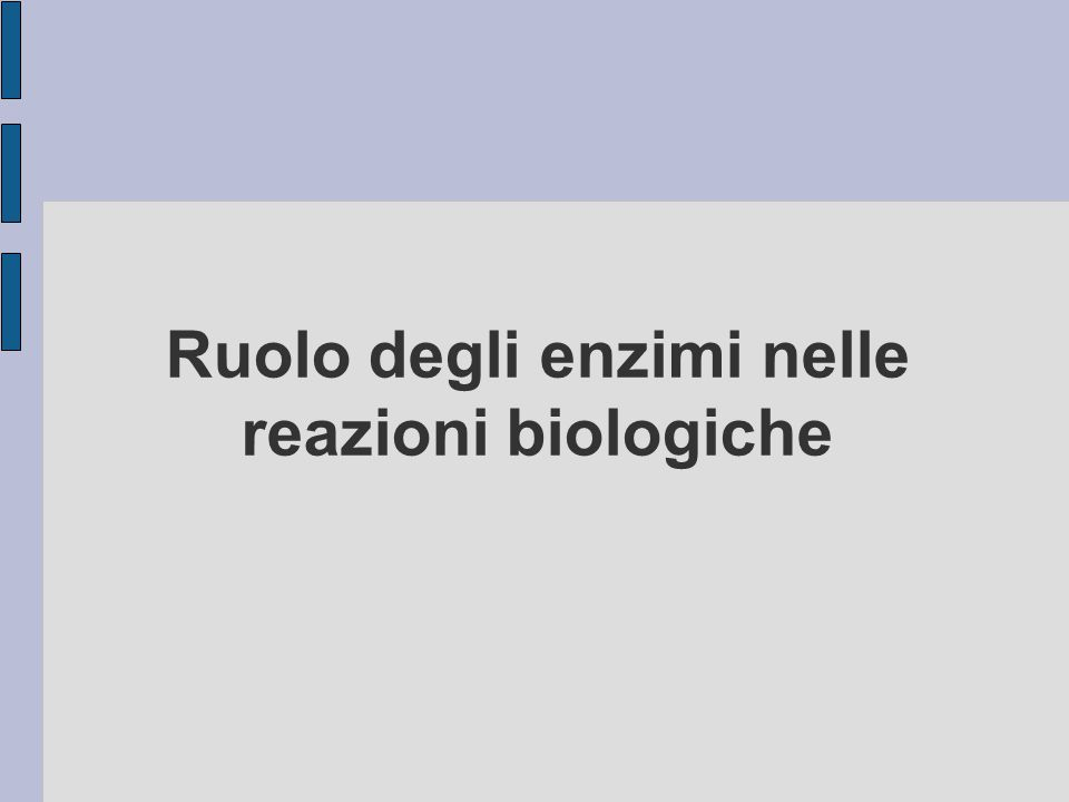 Ruolo degli enzimi nelle reazioni biologiche