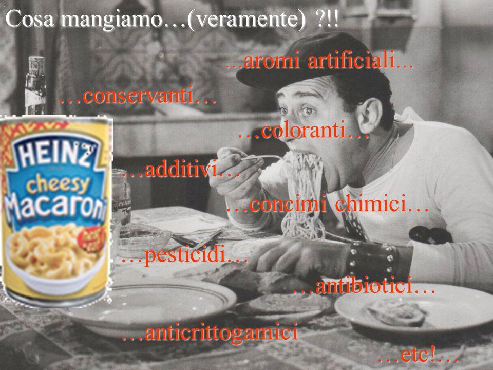 …conservanti… …additivi… … aromi artificiali … …coloranti… …concimi chimici… …pesticidi… …antibiotici… …anticrittogamici Cosa mangiamo…(veramente) !.