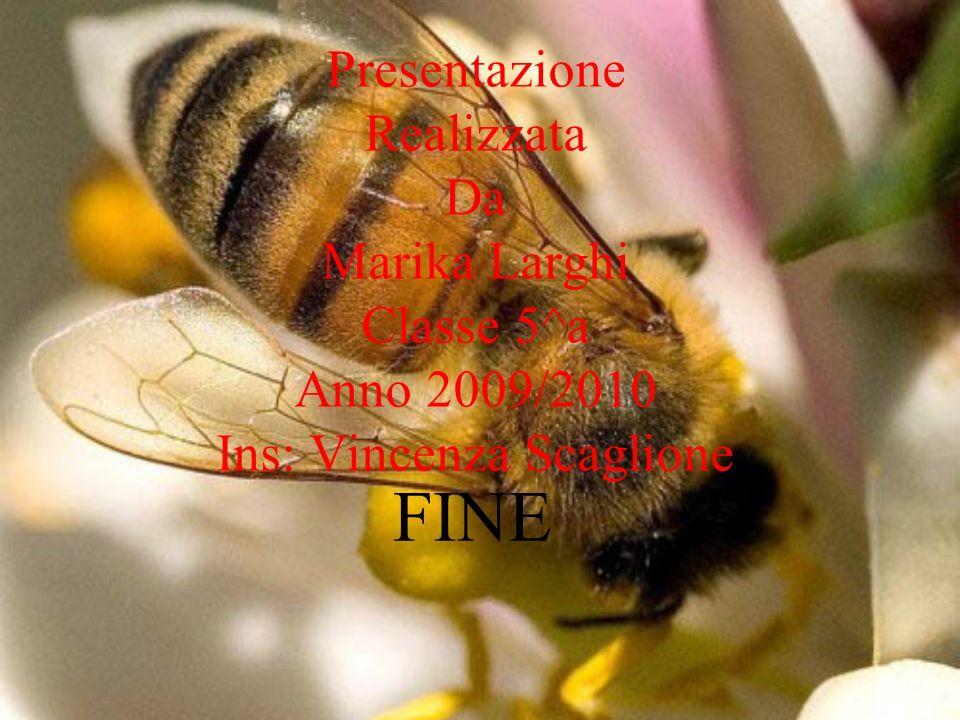 Presentazione Realizzata Da Marika Larghi Classe 5^a Anno 2009/2010 Ins: Vincenza Scaglione FINE