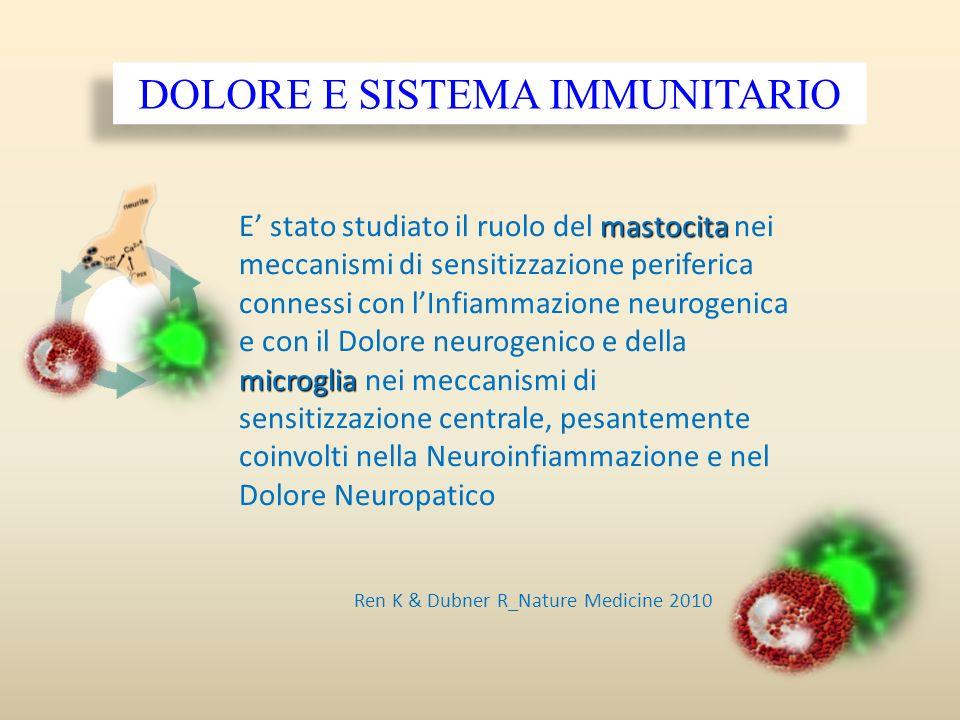 DOLORE E SISTEMA IMMUNITARIO mastocita microglia E stato studiato il ruolo del mastocita nei meccanismi di sensitizzazione periferica connessi con lIn