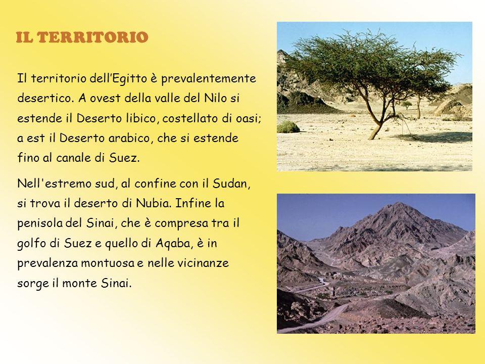 IL TERRITORIO Il territorio dellEgitto è prevalentemente desertico. A ovest della valle del Nilo si estende il Deserto libico, costellato di oasi; a e