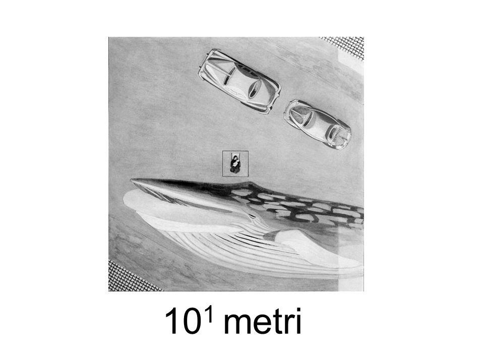 10 1 metri
