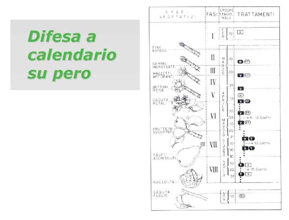 Un esempio pratico di difesa a calendario è quello relativo alla protezione della vite contro la Peronospora (Plasmopara viticola).