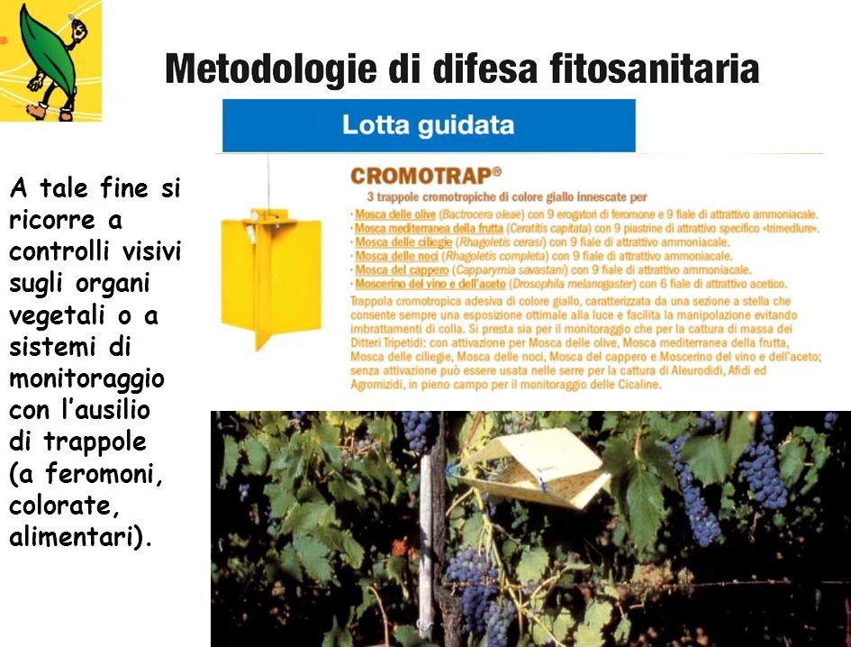 A tale fine si ricorre a controlli visivi sugli organi vegetali o a sistemi di monitoraggio con lausilio di trappole (a feromoni, colorate, alimentari