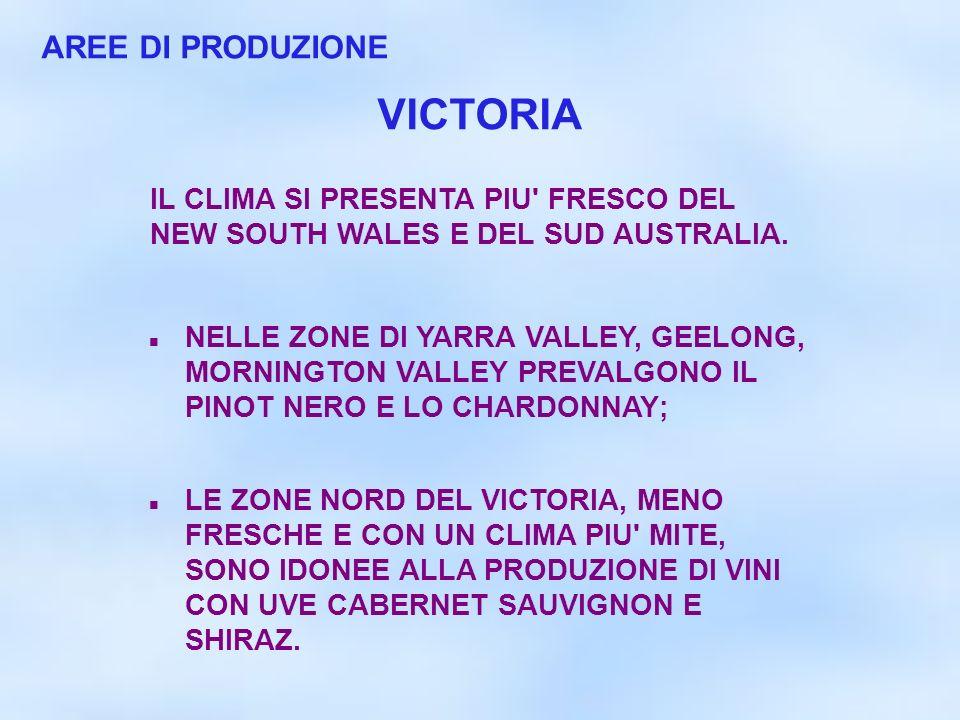 AREE DI PRODUZIONE IL CLIMA SI PRESENTA PIU' FRESCO DEL NEW SOUTH WALES E DEL SUD AUSTRALIA. NELLE ZONE DI YARRA VALLEY, GEELONG, MORNINGTON VALLEY PR