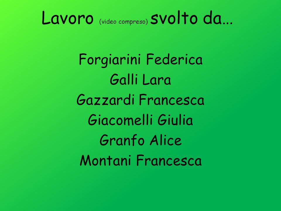 Lavoro (video compreso) svolto da… Forgiarini Federica Galli Lara Gazzardi Francesca Giacomelli Giulia Granfo Alice Montani Francesca