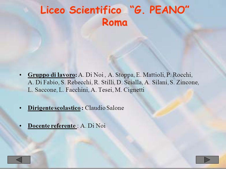 Gruppo di lavoro: A. Di Noi, A. Stoppa, E. Mattioli, P.
