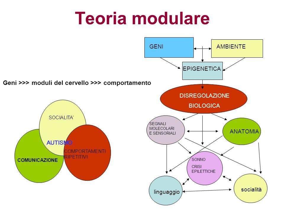 Teoria modulare Geni >>> moduli del cervello >>> comportamento COMUNICAZIONE COMPORTAMENTI RIPETITIVI SOCIALITA AUTISMO GENIAMBIENTE EPIGENETICA DISRE