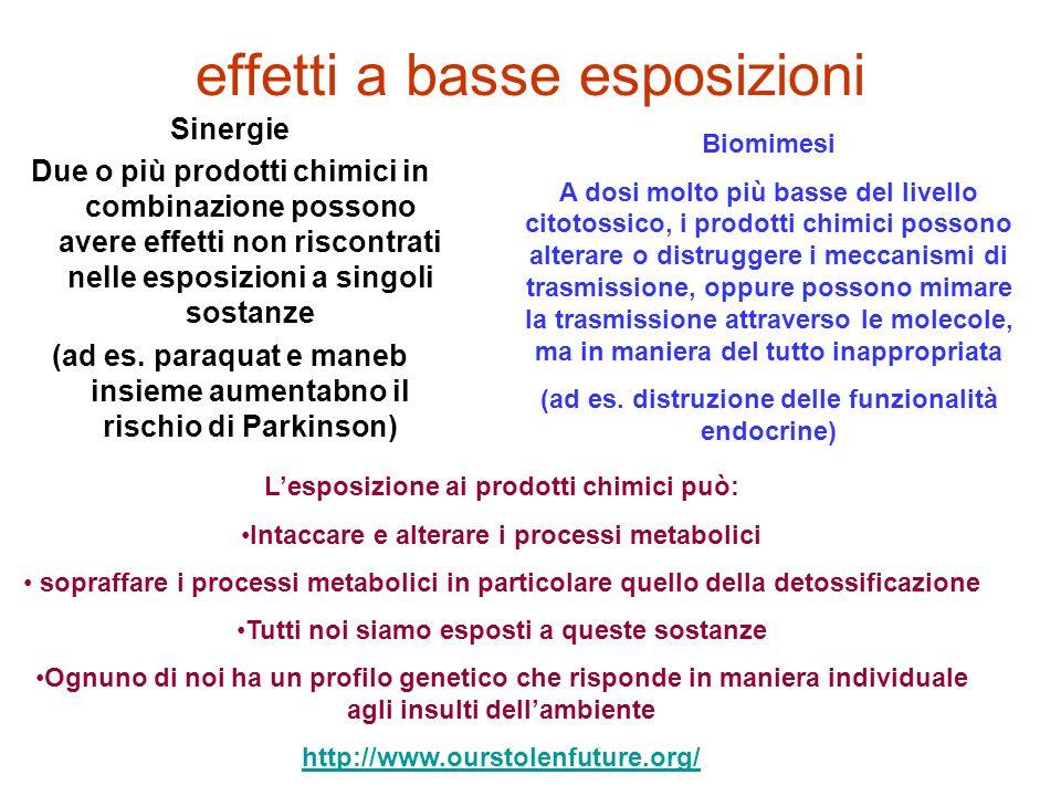 effetti a basse esposizioni Sinergie Due o più prodotti chimici in combinazione possono avere effetti non riscontrati nelle esposizioni a singoli sost
