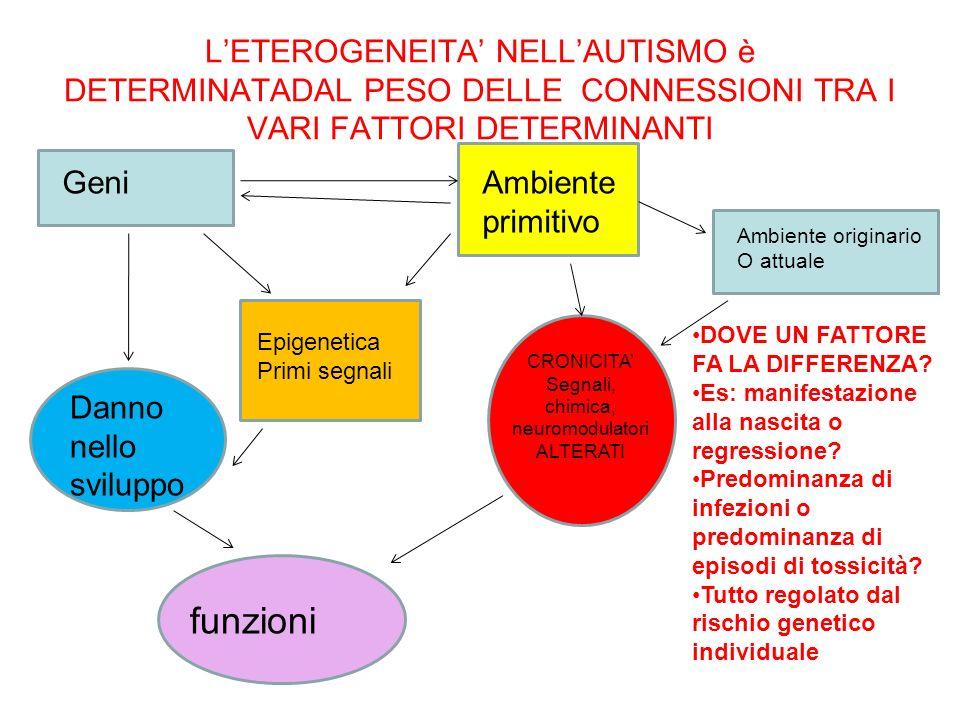 LETEROGENEITA NELLAUTISMO è DETERMINATADAL PESO DELLE CONNESSIONI TRA I VARI FATTORI DETERMINANTI GeniAmbiente primitivo Epigenetica Primi segnali Dan
